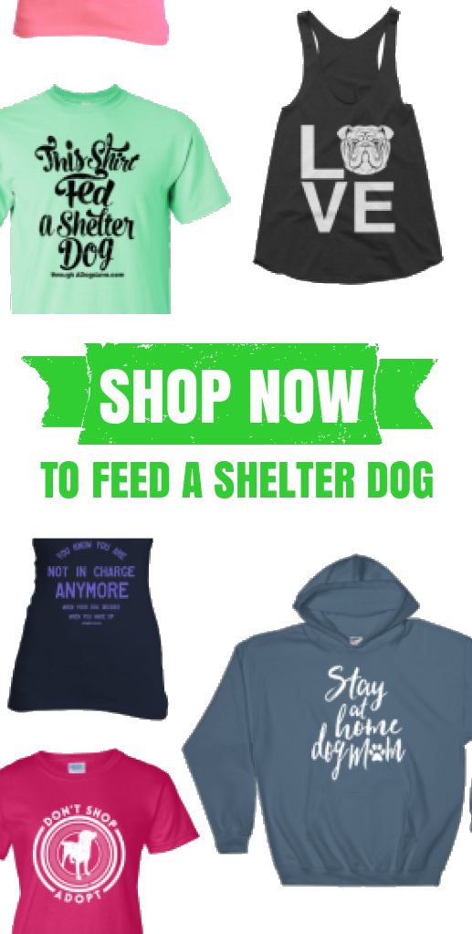 Shop Now to Feed a Shelter Dog