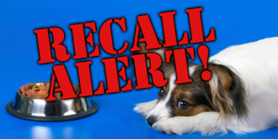 Popular Dog Food Recalled Due To Possible Elevated Levels Of Beef