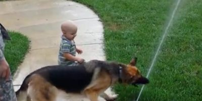 this adorable pup loves one thing actually two the toddler and the
